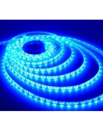 TIRA LED 3528 300 LED 5...